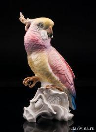 Розовый попугай какаду на кукурузном початке, Karl Ens, Германия, 1920-30 гг., артикул 01120