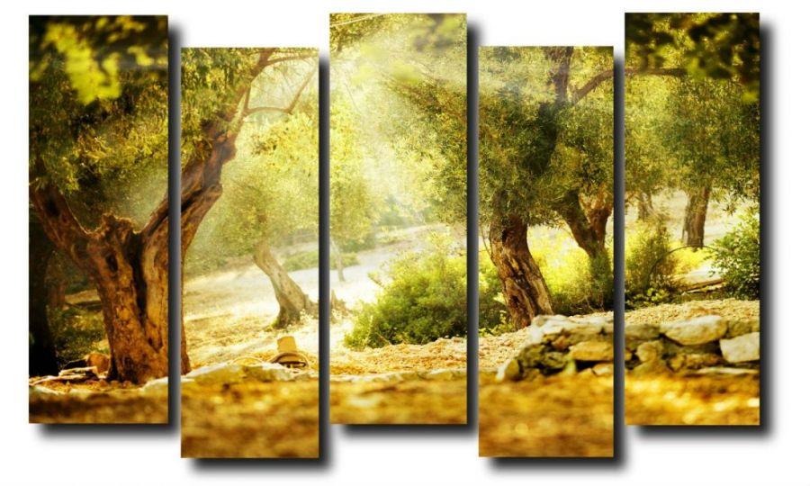 Модульная картина Природа. Лучи света.