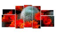 Модульная картина Колючий цветок