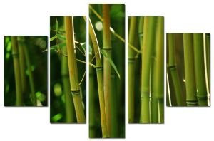 Модульная картина Бамбуковая роща