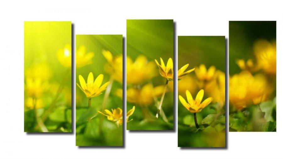 Модульная картина Цветы макро