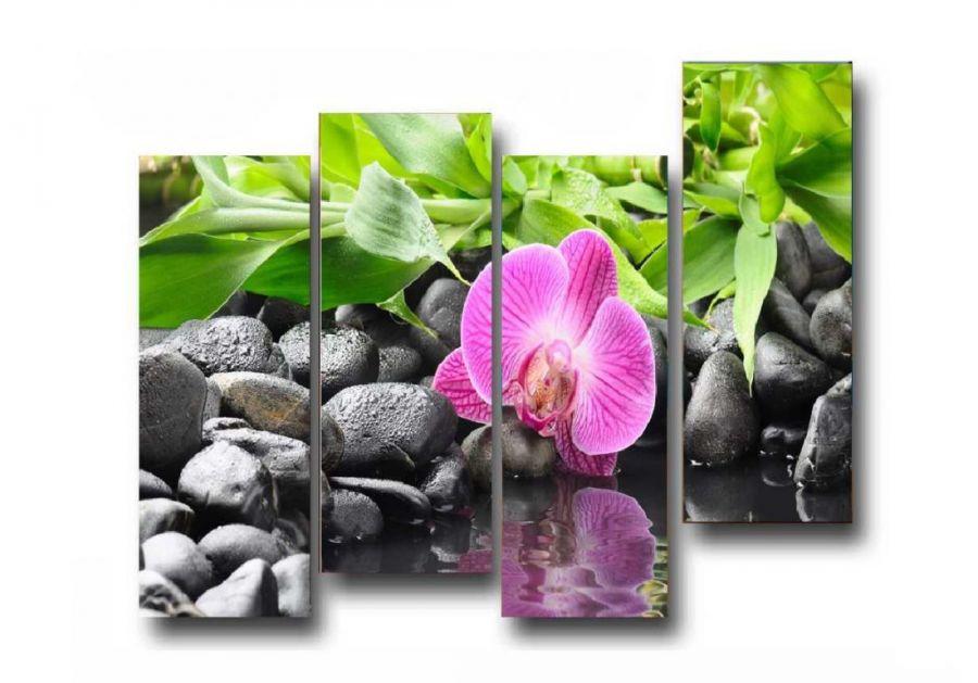 Модульная картина Цветок и камни