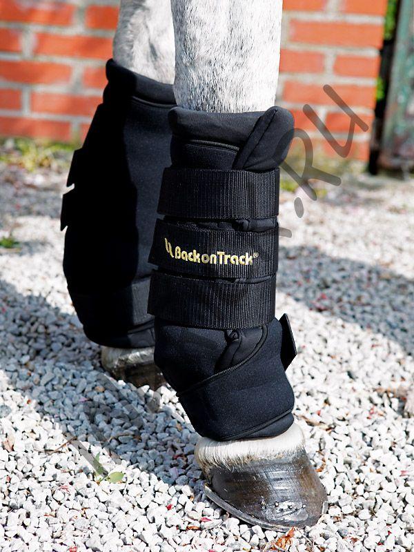 Денниковые ногавки с ватниками Back on Track Royal, цвет черный
