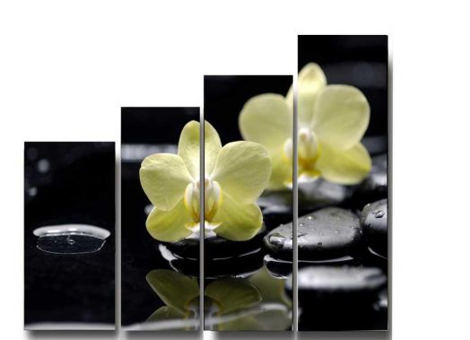 Модульная картина Орхидея на черных камнях