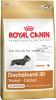 Royal Canin Dachshund 30 Junior для щенков Такса