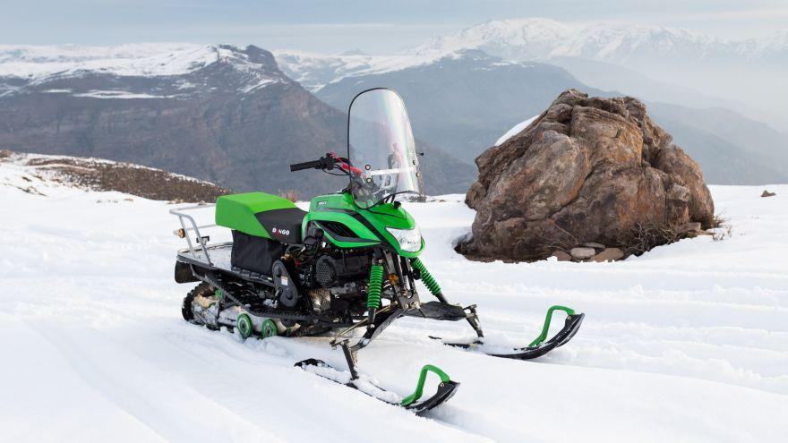 Снегоход DINGO T150 2018