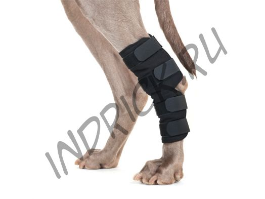 Бандаж Back on Track для собаки на скакательный сустав и коленное сухожилие