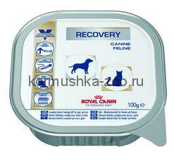 Royal Canin Recovery для кошек восстановительный период
