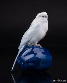 Волнистый попугай на тыкве, Royal Copenhagen, Дания., артикул 01338