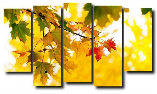 Модульная картина Природа. Осень. Кленовые листья