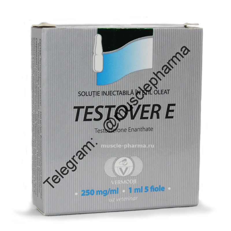 Testover-E (VERMODJE) 1 ампула / 250mg * 1мл.
