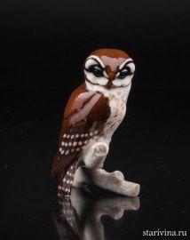 Сова (Мохноногий сыч), миниатюра, Hutschenreuther, Германия, 1960 гг., артикул 01460