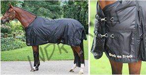 Зимняя попона для лошади Back on Track Frost