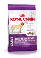 Royal Canin для щенков Giant Junior Active