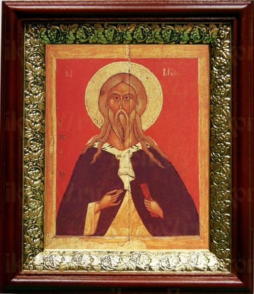 Илия пророк (19х22), темный киот