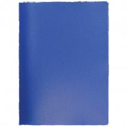 Папка с пр.вставк./20 Proff DB20АВ-04 синяя