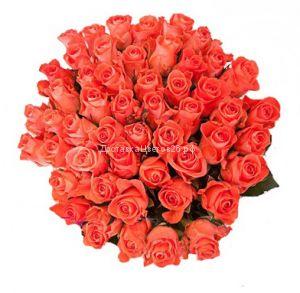 51 и 101 оранжевая роза по оптовой цене