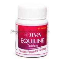 Препарат для снижения повышенного кровяного давления Экуилайн Джива Аюрведа  / Jiva Ayurveda Equiline