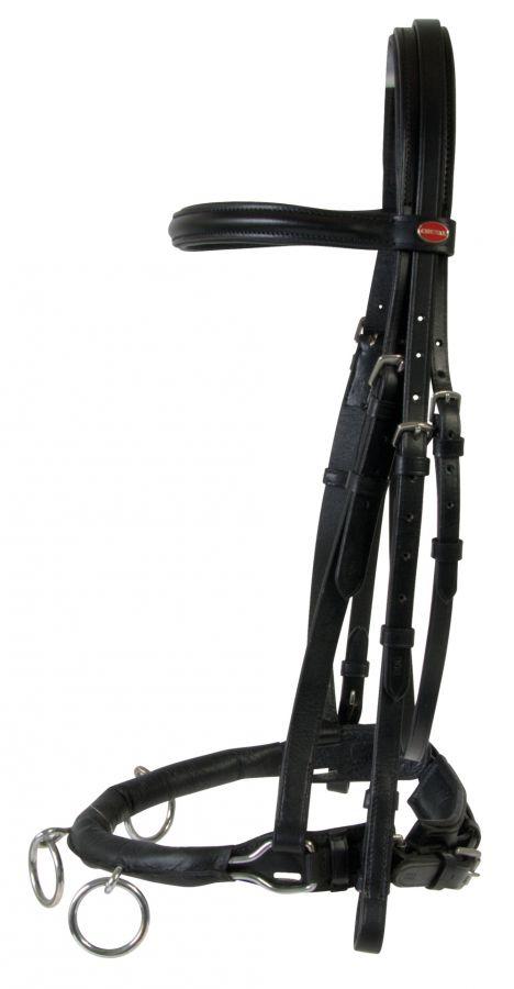 Кавессон с тремя кольцами. Scan-Horse A/S