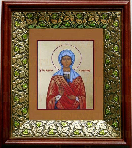 Анисия Солунская (21х24), киот со стразами