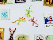 """Ящерица - магнит на холодильник. В подарок при заказе игры """"Эволюция. Подарочный набор"""""""