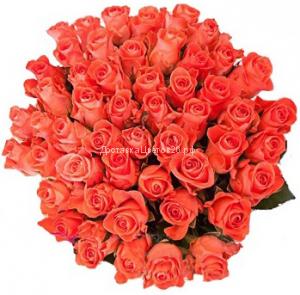 51 и 101 оранжевая роза 60 см.