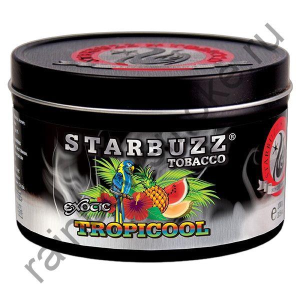 Starbuzz Bold 100 гр - Tropicool (Тропическая Прохлада)