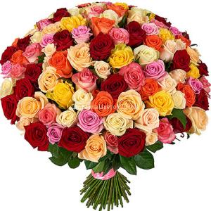 51 и 101 разноцветная роза по оптовой цене