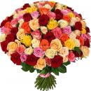 101 разноцветная роза (высота 40 см.)
