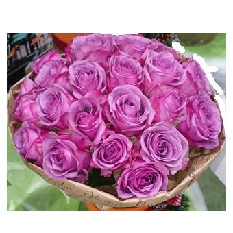 Розы 25шт