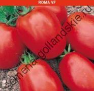 """Томат """"РОМА ВФ"""" (Roma VF) 10 семян"""