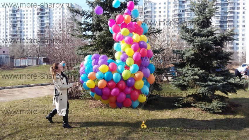 Запуск шаров на выписку