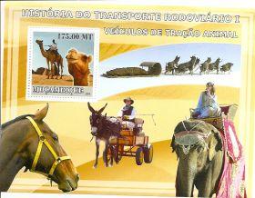 История транспорта  Мозамбик 2009