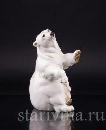 Сидящий белый медведь, Hutschenreuther, Германия, 1970 гг