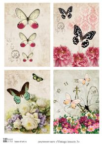 Vintage insects 3
