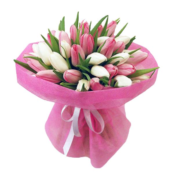 Бело-розовый букет 35 тюльпанов
