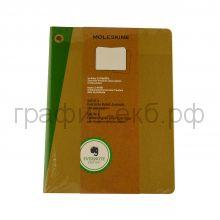 Книжка зап.Moleskine XLarge Evernote2 линейка бежевая SKQP421EVER
