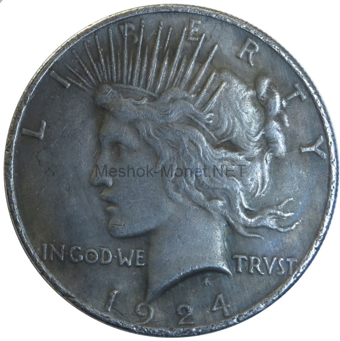 Копия монеты 1 доллар 1924 года