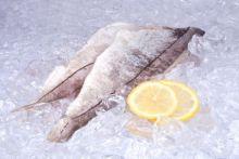 Филе пикши на коже Мурманск от 12 кг
