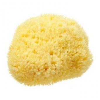 Органическая морская Губка Honeycomb