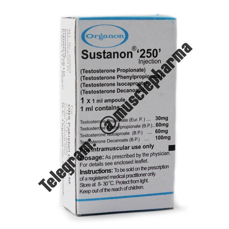 SUSTANON 250 (ORGANON). 1 ампула * 1 мл.