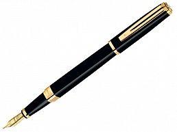 Ручка перьевая Waterman Expert3 черный СТ F S0951740