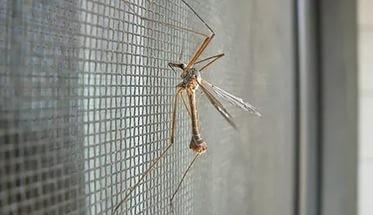 Москитная сетка на окна с самоклеящейся лентой для крепления