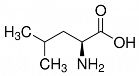 L-Лейцин, 10 гр