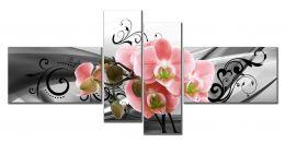орхидея завитки