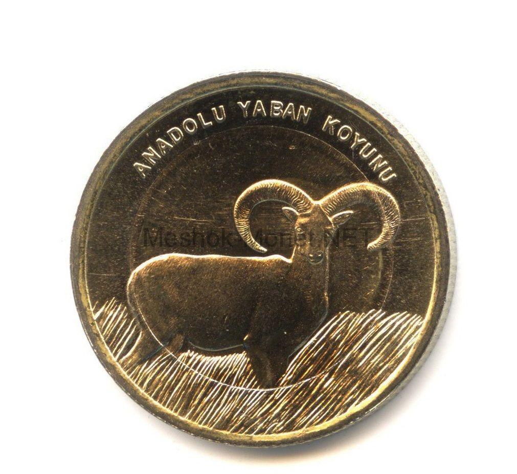Турция 1 лира 2015 Анатолийская дикая овца