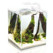 Aquael Аквариум Shrimp Set Smart Plant (20 л)