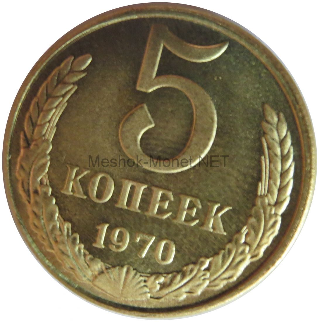 Копия монеты 5 копеек 1970 года