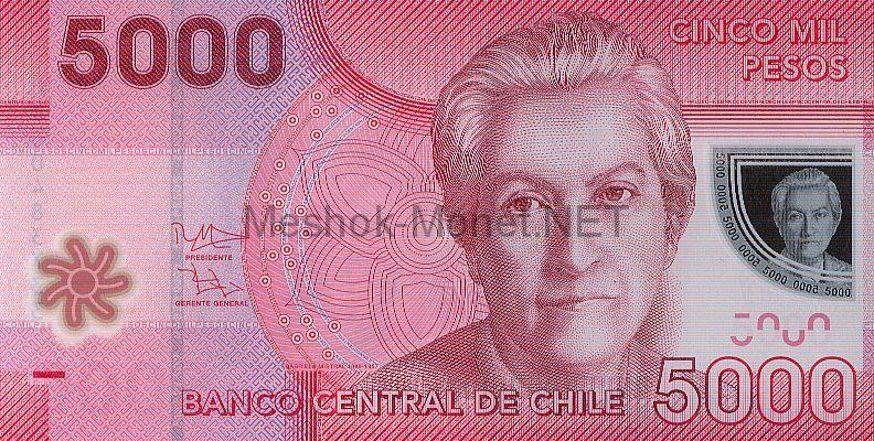 Банкнота Чили 5000 песо 2012 г
