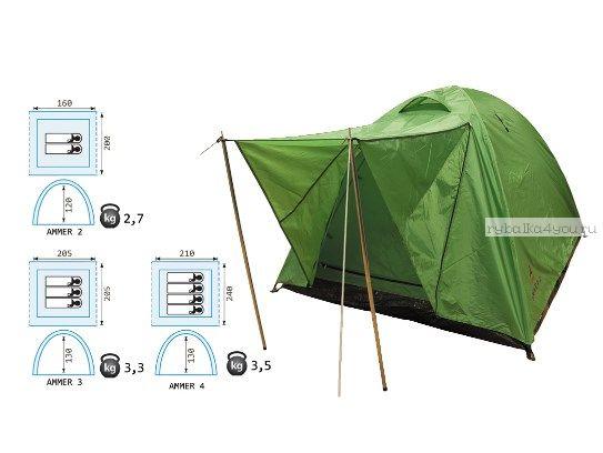 Палатка Reisen Ammer 2 (olive)